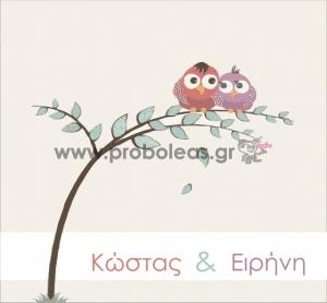 Προσκλητήριο κόμικ πουλάκια