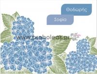 Σουπλά μπλε ορτανσία